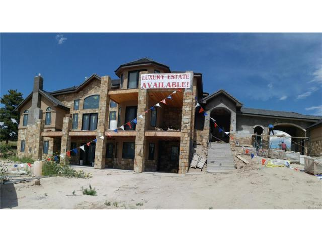 9877 Red Currant Place, Parker, CO 80138 (MLS #3876539) :: 8z Real Estate