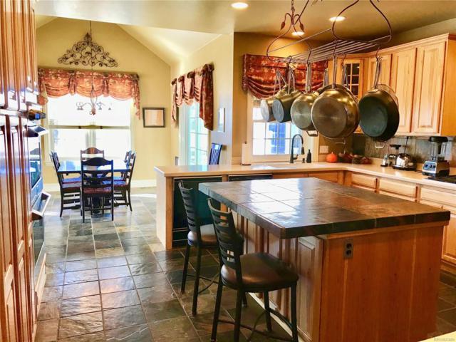 3650 Deer Creek Drive, Parker, CO 80138 (#3733240) :: The Peak Properties Group