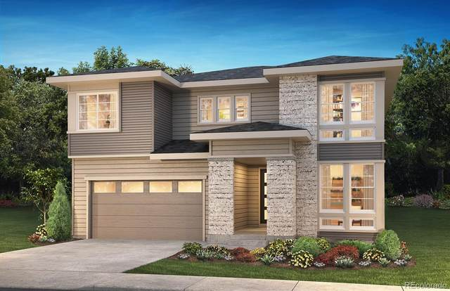 6622 Barnstead Drive, Castle Pines, CO 80108 (#1500129) :: The HomeSmiths Team - Keller Williams