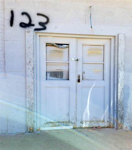 123 E 14th Street, Leadville, CO 80461 (#1500766) :: The DeGrood Team
