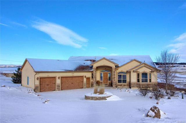 20440 Taversham Court, Monument, CO 80132 (MLS #1500792) :: 8z Real Estate