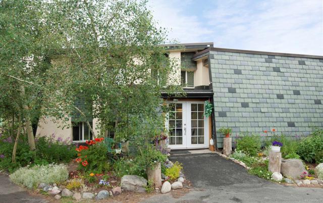 921 Fairview Boulevard #13, Breckenridge, CO 80424 (#1503123) :: Structure CO Group