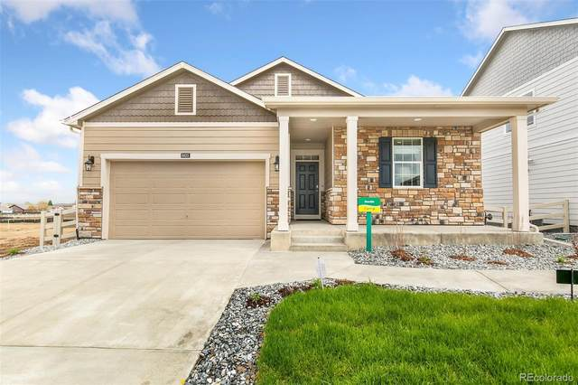 7405 Fraser Circle, Frederick, CO 80530 (#1504481) :: Wisdom Real Estate