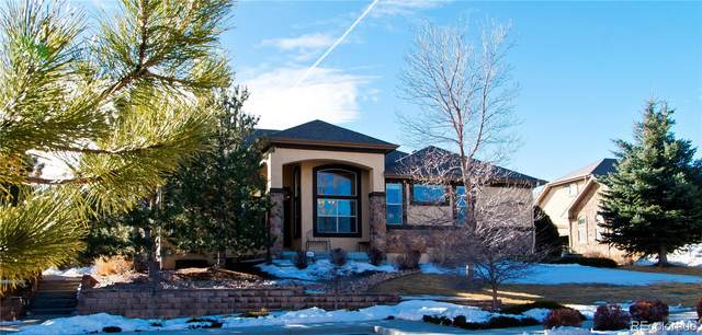 9644 Carriage Creek Point, Colorado Springs, CO 80920 (#1506020) :: The Griffith Home Team