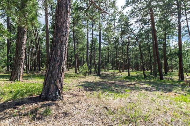 19124 Hilltop Pines Path, Monument, CO 80132 (#1506771) :: The Gilbert Group