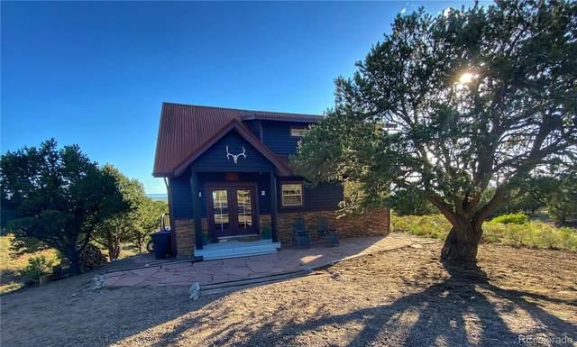 1419 Badger Road, Crestone, CO 81131 (#1506789) :: Compass Colorado Realty
