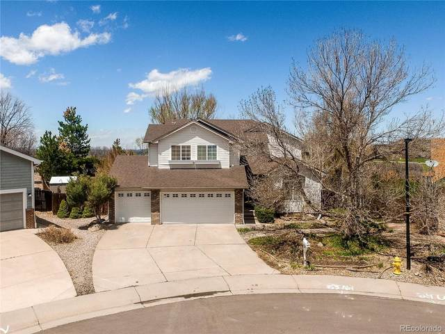 1521 Scott Canyon Lane, Castle Rock, CO 80104 (#1509836) :: The DeGrood Team