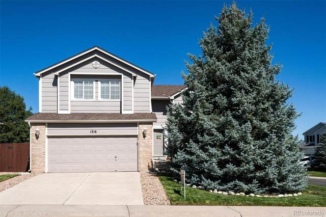 1316 Parsons Avenue, Castle Rock, CO 80104 (#1512658) :: Kimberly Austin Properties