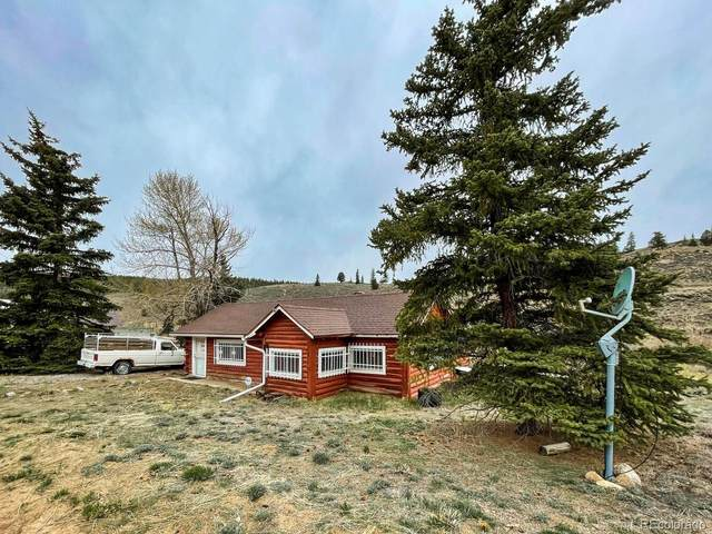 43275 County Road 397, Granite, CO 81228 (#1513029) :: The DeGrood Team