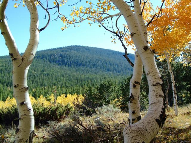 National Forest Road 550, Encampment, WY 82325 (#1515912) :: 5281 Exclusive Homes Realty