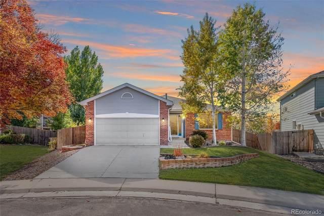 13252 Columbine Circle, Thornton, CO 80241 (#1520527) :: Wisdom Real Estate