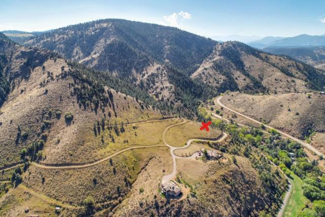21725 Shady Lane, Idledale, CO 80453 (#1524487) :: Berkshire Hathaway Elevated Living Real Estate