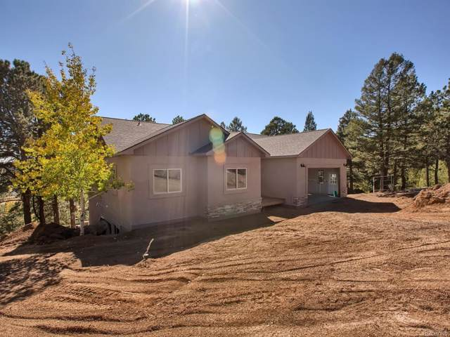 119 Summit Lake Drive, Divide, CO 80814 (MLS #1525325) :: 8z Real Estate