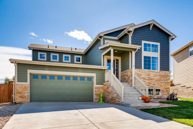 328 Cholla Drive, Loveland, CO 80537 (#1530308) :: The HomeSmiths Team - Keller Williams