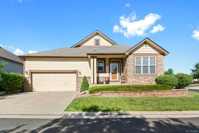 6647 S Robb Way, Littleton, CO 80127 (#1534273) :: The HomeSmiths Team - Keller Williams