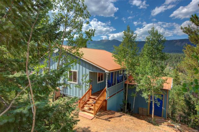 153 Wise Road, Bailey, CO 80421 (#1536595) :: Bring Home Denver
