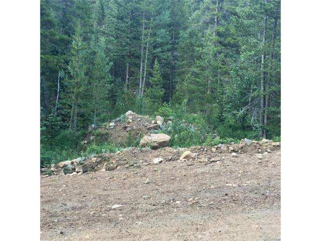 Gamble Gulch Road, Rollinsville, CO 80474 (MLS #1537108) :: 8z Real Estate