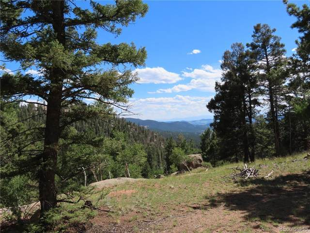 2494 N Mountain Estates Road, Florissant, CO 80816 (MLS #1538155) :: 8z Real Estate