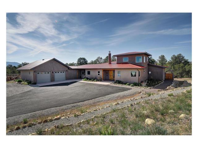 12798 County Road 261P, Nathrop, CO 81236 (MLS #1551827) :: 8z Real Estate