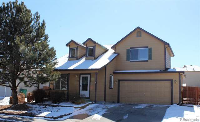 308 Rushmore Street, Elizabeth, CO 80107 (#1553089) :: The Scott Futa Home Team