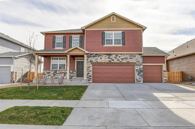 5846 Point Rider Circle, Castle Rock, CO 80104 (#1555001) :: The Griffith Home Team