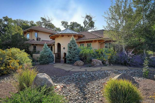 1133 E Ouray Avenue, Poncha Springs, CO 81242 (#1555084) :: Arnie Stein Team | RE/MAX Masters Millennium