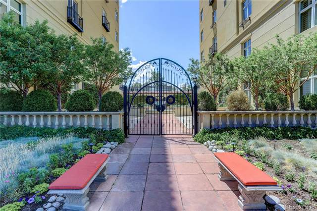 25 N Downing Street 1-305, Denver, CO 80218 (MLS #1555528) :: 8z Real Estate