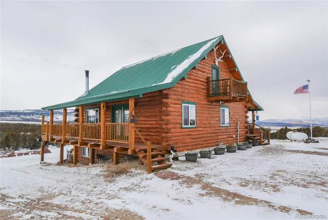 9000 County Road 10, Maybell, CO 81640 (#1558282) :: Berkshire Hathaway HomeServices Innovative Real Estate