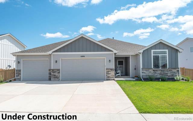 318 Dorothy, Berthoud, CO 80513 (MLS #1558545) :: The Sam Biller Home Team