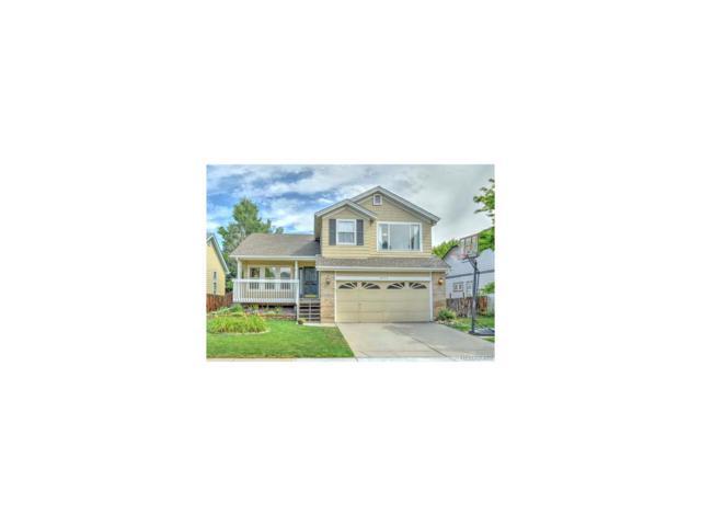 4115 Snowbird Avenue, Broomfield, CO 80020 (MLS #1561790) :: 8z Real Estate