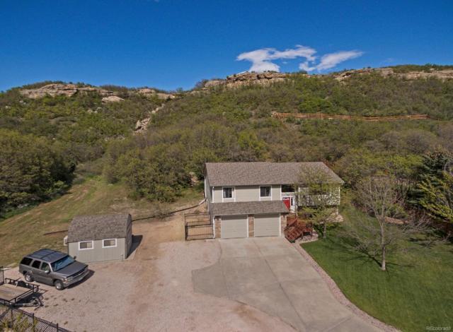 368 S Larkspur Drive, Castle Rock, CO 80104 (#1562095) :: The HomeSmiths Team - Keller Williams