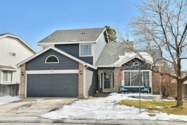 8915 Edgewood Lane, Highlands Ranch, CO 80130 (#1563245) :: The Dixon Group