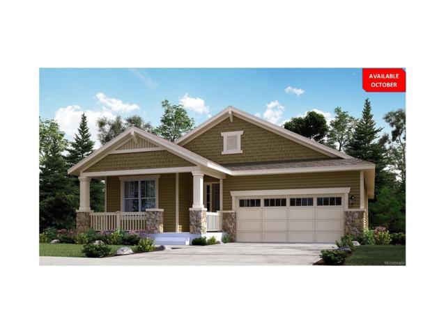14833 Munich Avenue, Parker, CO 80134 (MLS #1564447) :: 8z Real Estate