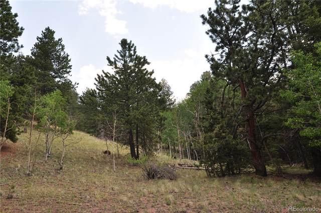 288 Troy Drive, Cripple Creek, CO 80813 (MLS #1566515) :: Find Colorado