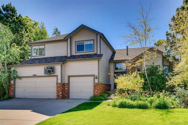 10024 Cottoncreek Drive, Highlands Ranch, CO 80130 (#1567040) :: Bring Home Denver with Keller Williams Downtown Realty LLC