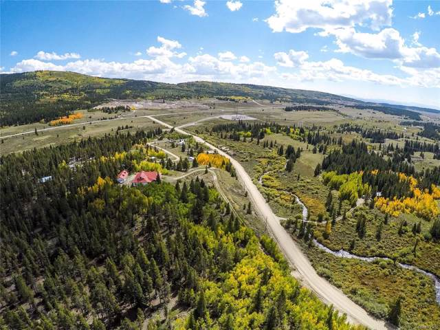 455 & 618 Mosquito Pass Road, Alma, CO 80420 (#1567586) :: Mile High Luxury Real Estate