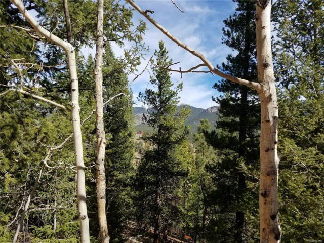 205 Wise Road, Bailey, CO 80421 (#1568647) :: Bring Home Denver
