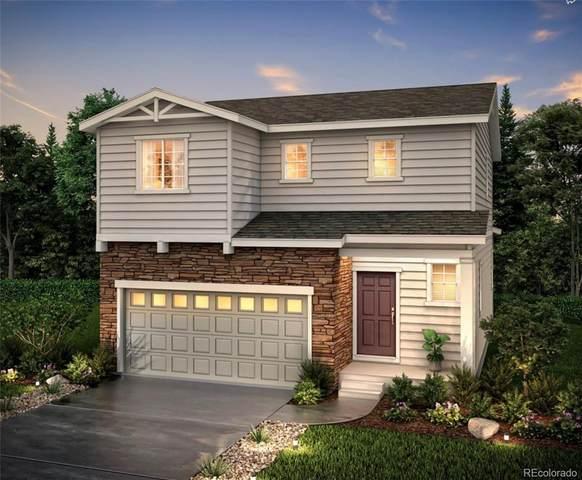 5484 Blue Lunar Lane, Castle Rock, CO 80104 (#1571069) :: Berkshire Hathaway HomeServices Innovative Real Estate