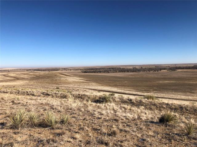 7 County Road 170, Agate, CO 80101 (#1573837) :: The Heyl Group at Keller Williams
