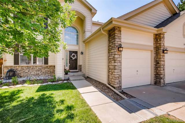17158 Cornerstone Drive, Parker, CO 80134 (#1575067) :: The Colorado Foothills Team   Berkshire Hathaway Elevated Living Real Estate