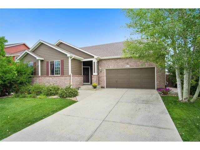 3637 Golden Spur Loop, Castle Rock, CO 80108 (MLS #1575168) :: 8z Real Estate