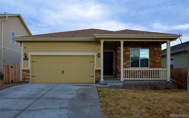 9558 Dahlia Lane, Thornton, CO 80229 (#1575601) :: Hudson Stonegate Team