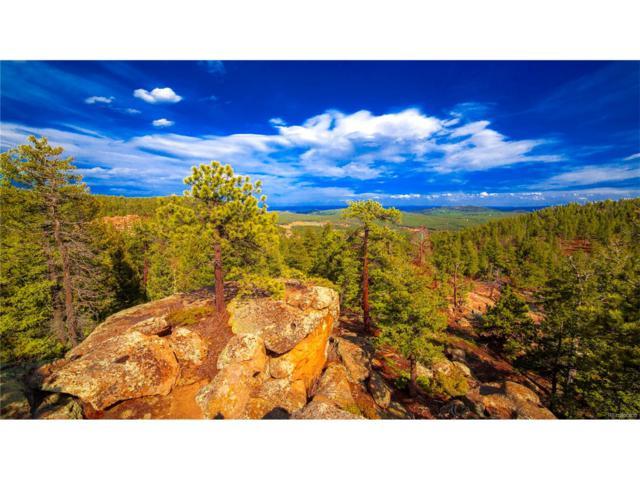 0 Tallberg Ln, Conifer, CO 80433 (MLS #1575853) :: 8z Real Estate