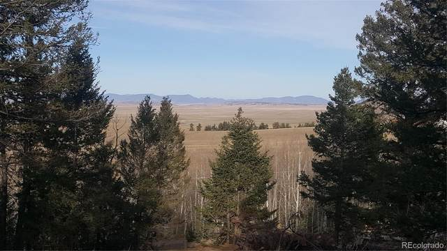 1144 Campfire Road, Hartsel, CO 80449 (#1576613) :: Venterra Real Estate LLC