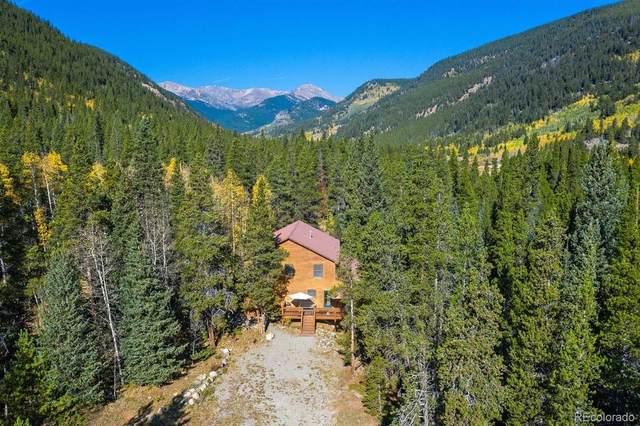3301 Beaver Lane, Grant, CO 80448 (MLS #1577250) :: 8z Real Estate