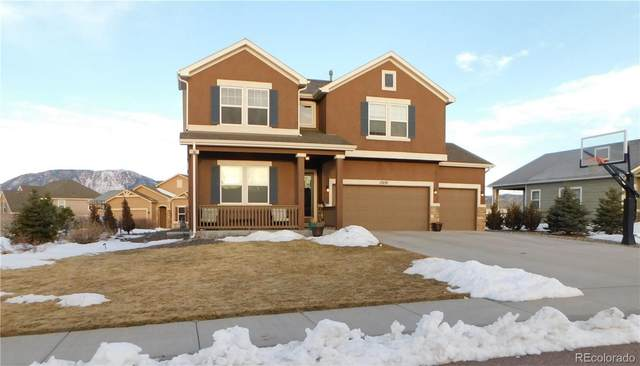 17630 Water Flume Way, Monument, CO 80132 (#1577769) :: The DeGrood Team