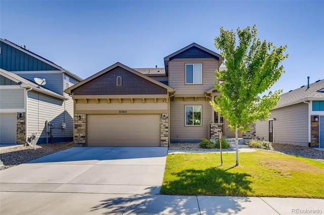 6565 Blue Spruce Street, Frederick, CO 80530 (MLS #1584299) :: 8z Real Estate