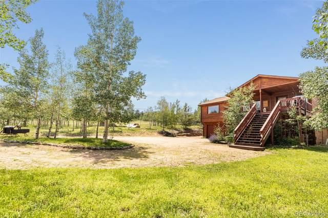 347 Saddlestring Road, Bailey, CO 80421 (#1587698) :: iHomes Colorado