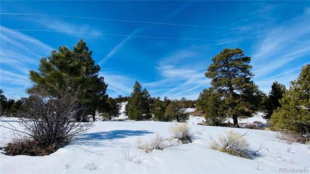 8 W Conejos Trails, Antonito, CO 81120 (#1587926) :: The DeGrood Team