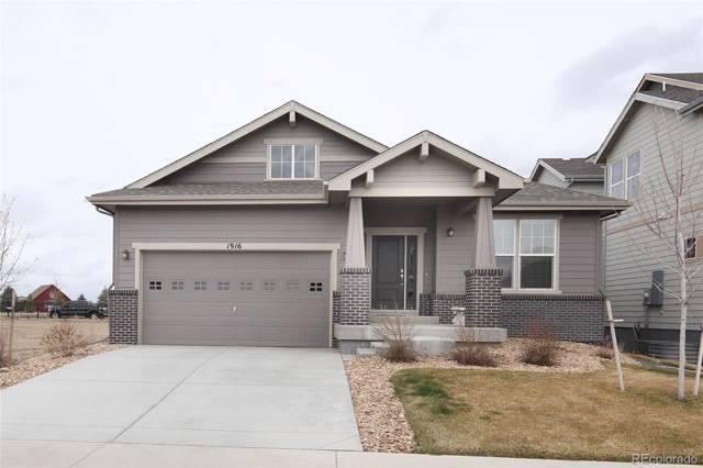 1916 Los Cabos Drive, Windsor, CO 80550 (MLS #1588201) :: Colorado Real Estate : The Space Agency